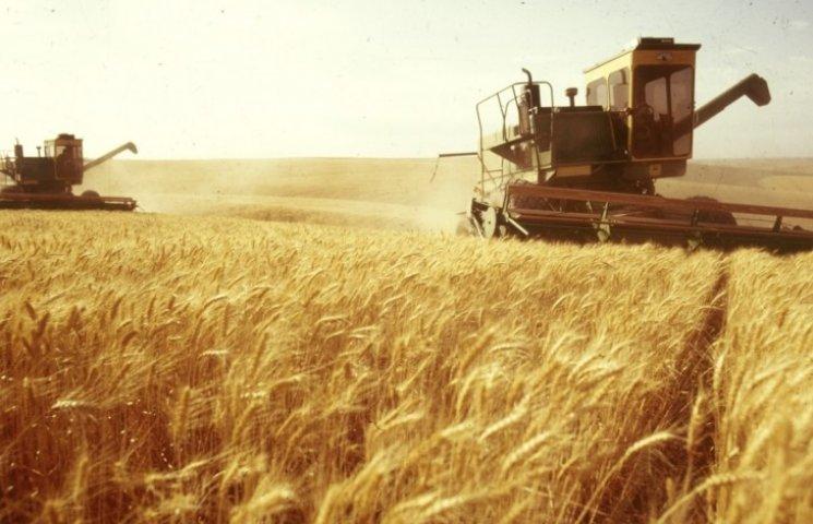 У зборі врожаю зернових культур перемогла Одеська область