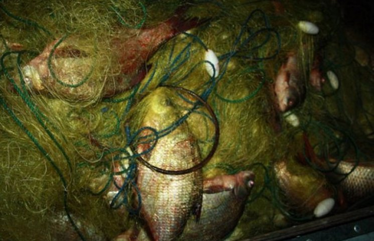 На Полтавщині водна міліція затримала двох рибінспекторів за браконьєрство