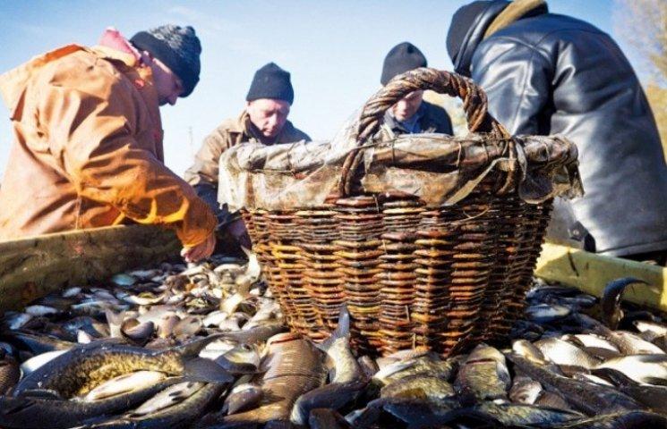 На Миколаївщині лише за місяць браконьєри попались на 76 порушеннях