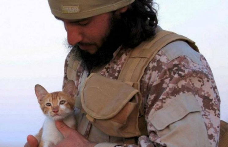 """""""Исламское государство"""" уже использует котенка для вербовки (ФОТО)"""