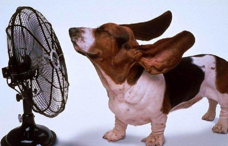 У Хмельницькому буде спекотно