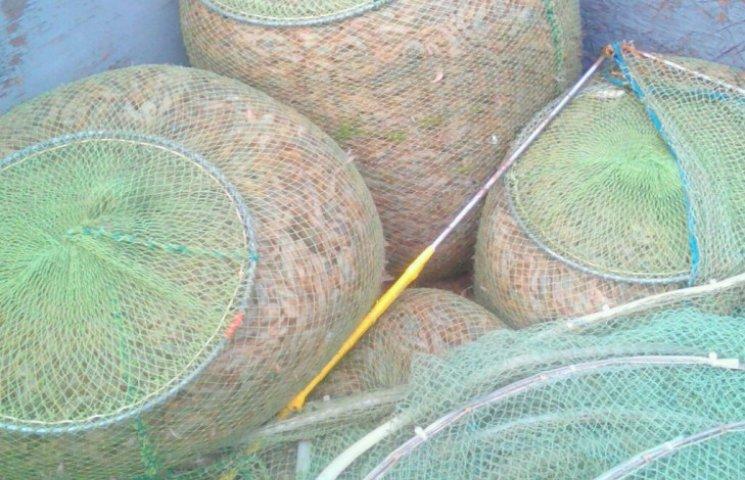"""В Очакові підприємець нелегально """"навигрібав"""" креветки більш ніж на 100 тис. грн"""