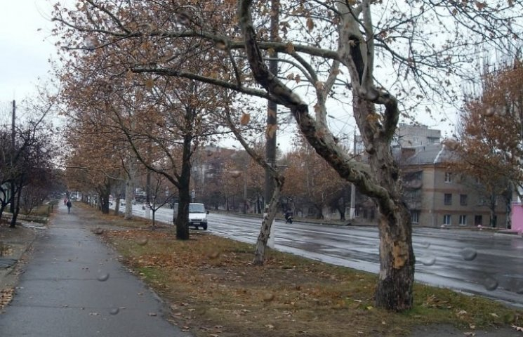 """""""Миколаївоблавтодор"""" звинуватили у неналежному утриманні магістралей у місті"""
