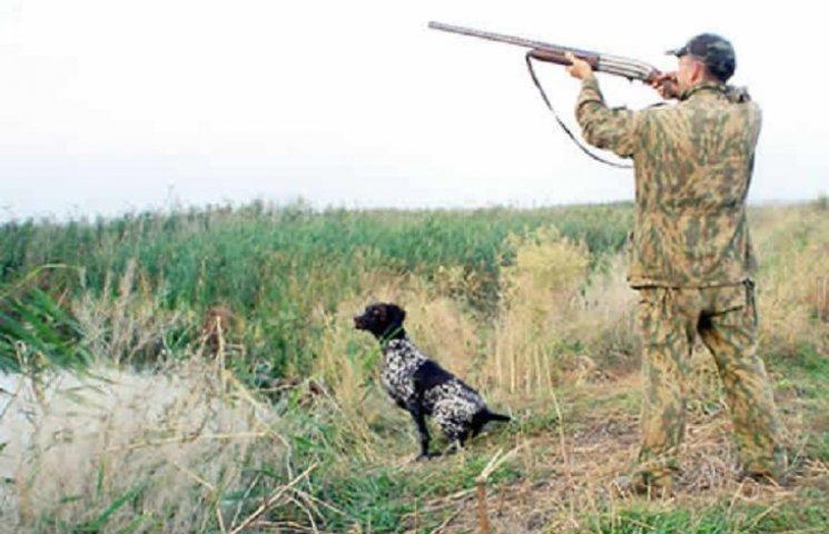 Один у полі не воїн: Як чотирилапі допомагають полтавцям на полюванні