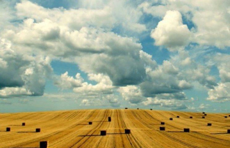 Хмельниччина завершила збір ранніх зернових культур