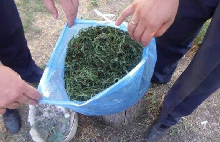 """На Миколаївщині 52-річний """"агроном"""" спалився на вирощуванні канабісу та коноплі"""