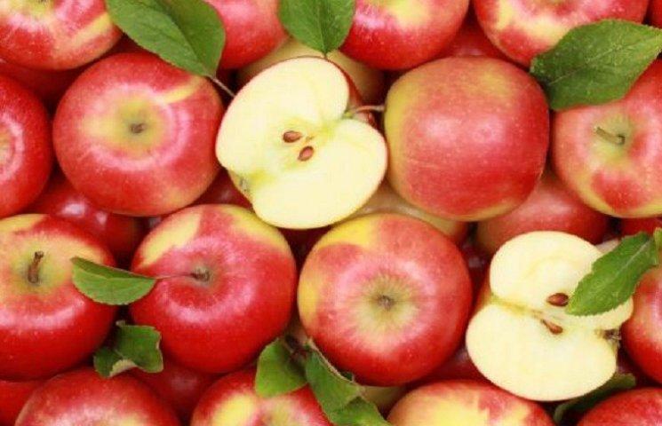 У Харкові збирають яблука для поранених АТОшників
