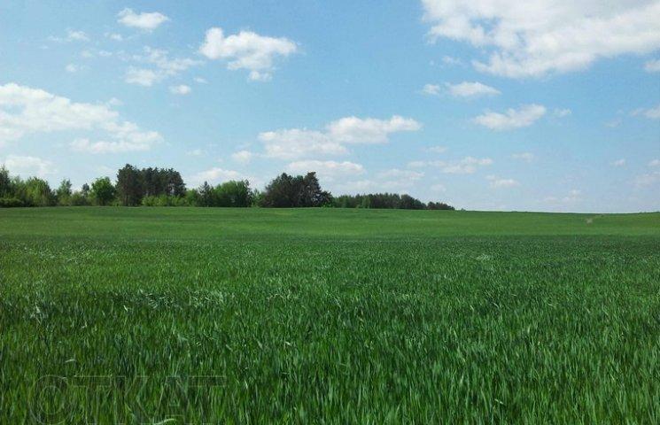 На Хмельниччині ділки використали землі сільгосппризначення в якості кар