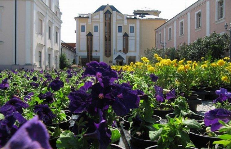 У Вінниці висадили прапор України з чорнобривців та петуній