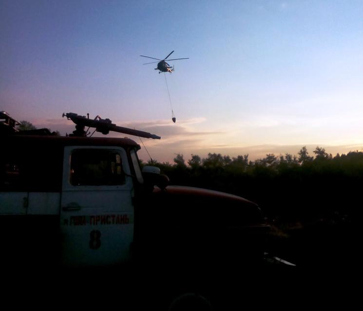 У Херсонській області сталося дві лісові пожежі