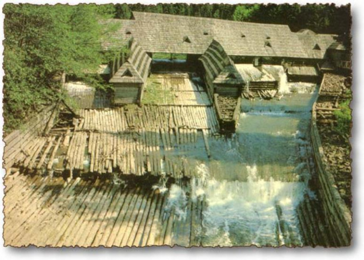 Унікальний Музей лісу і сплаву на Чорній ріці, нарешті відновлюється