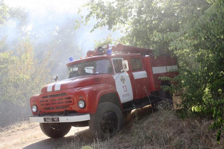 На Запоріжжі майже сім годин гасили пожежу в лісництві