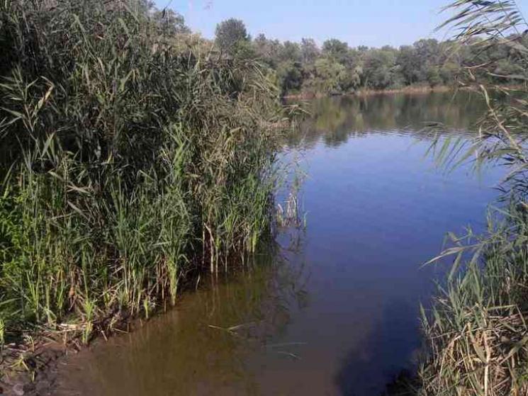 На Полтавщині потонув неповнолітній