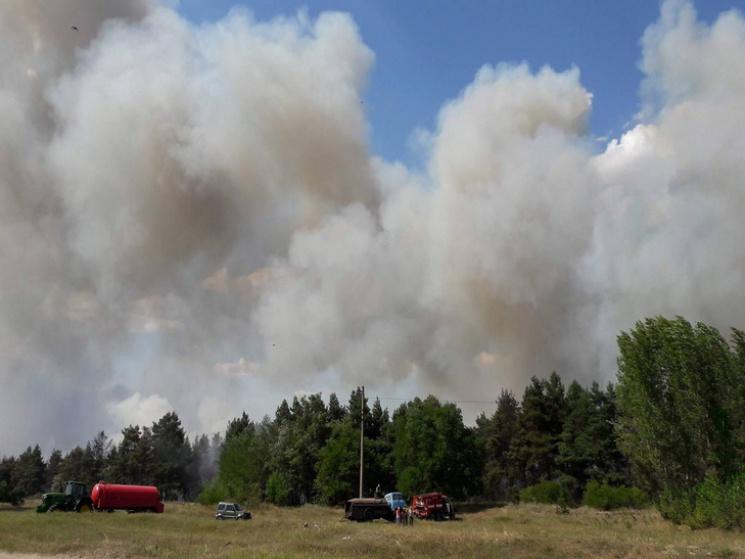 Ктушению лесного пожара вХарьковской области привлечена авиация
