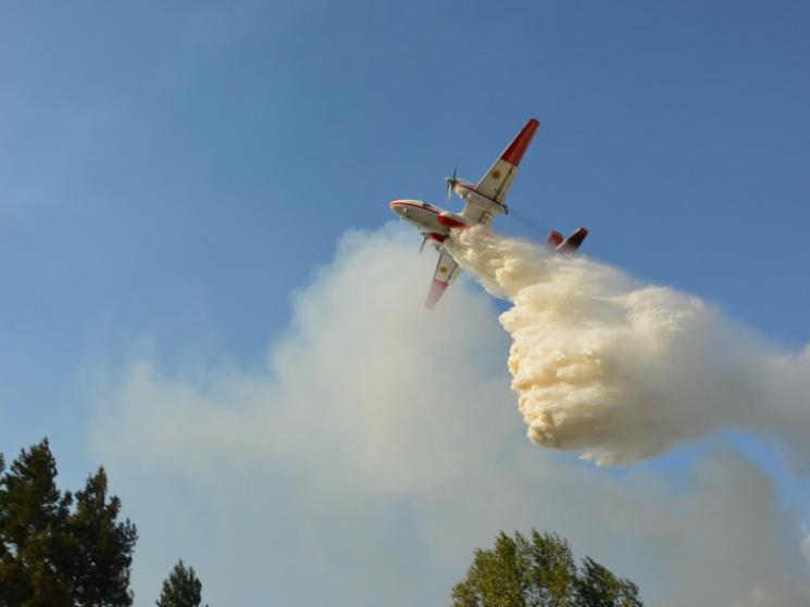 НаДніпропетровщині загасили масштабну лісову пожежу