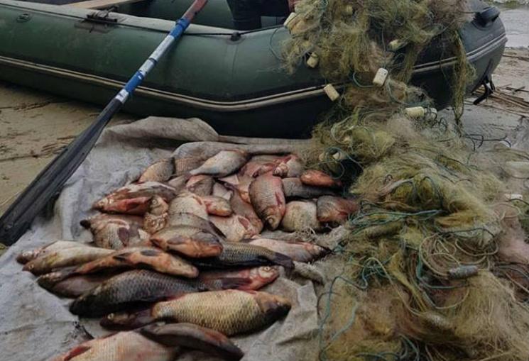 За місяць на рибалок Прикарпаття накладено штрафів на шість тисяч гривень