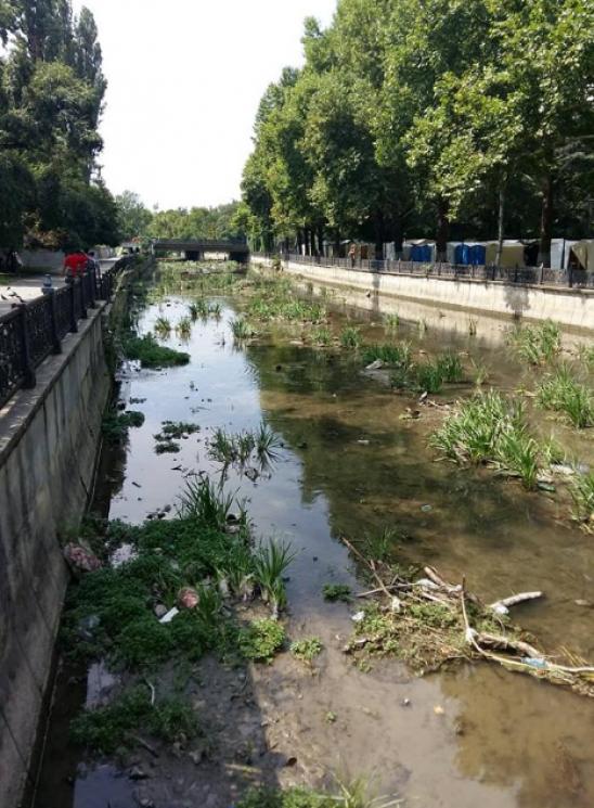 Головна річка окупованого Сімферополя перетворилася в брудну калюжу (ФОТО)