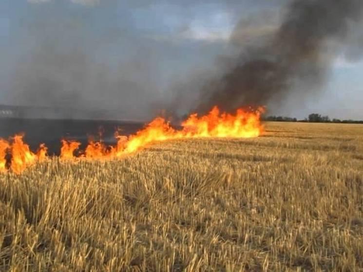 На Хмельниччині через пожежу авто згоріло півтора гектари стерні (ОНОВЛЕНО, ФОТО)