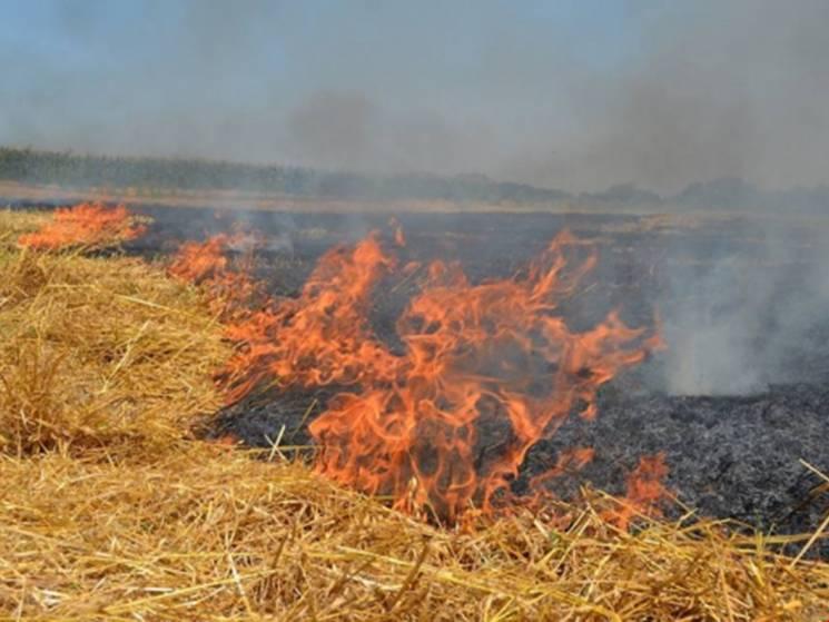 Пожар на Тернопольщине уничтожил практич…