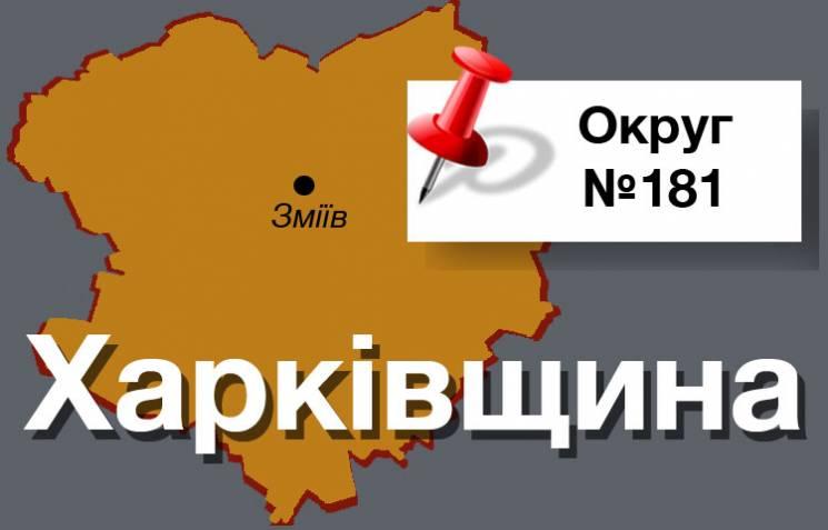 """Округ №181: Тут виринув """"кіндер-сюрприз"""" Добкіна і Рабіновича"""