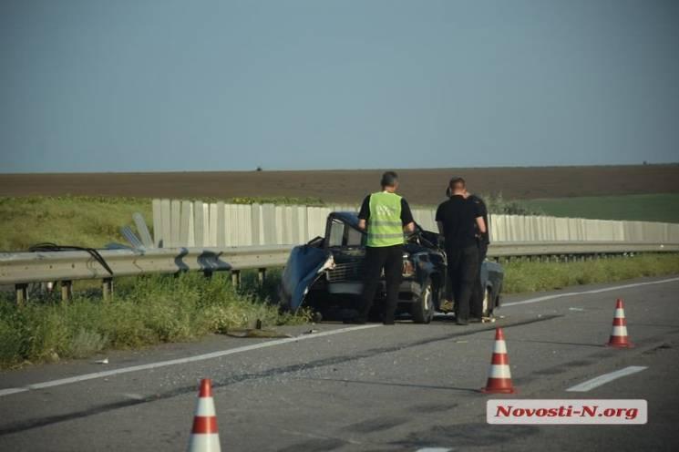 На Миколаївщині водій розбився, рятуючи собаку (ФОТО)