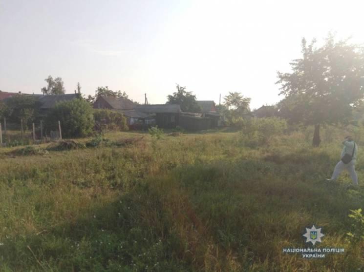 На Миколаївщині коп врятував людей від оскаженілого бика (ВІДЕО)