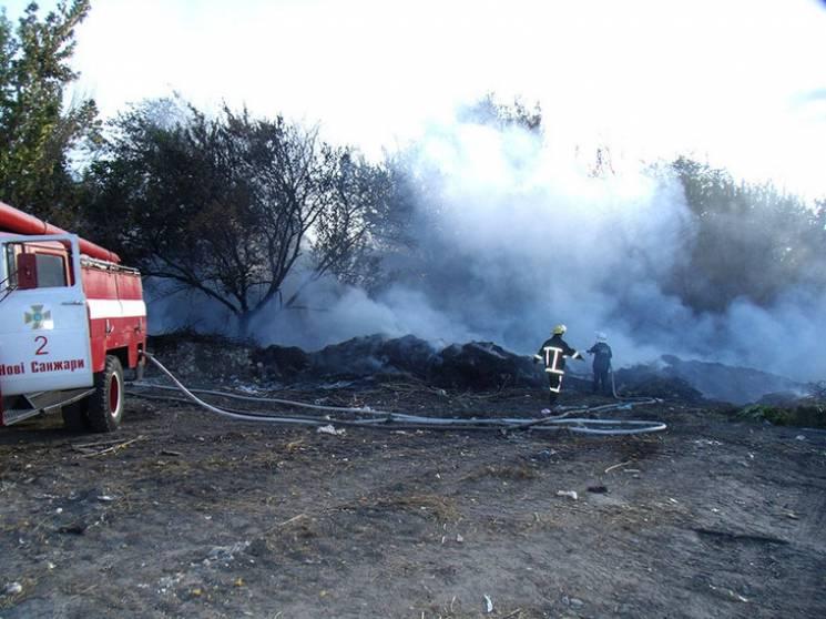 На Полтавщині посеред лісу загорілись сміттєві купи (ФОТО)