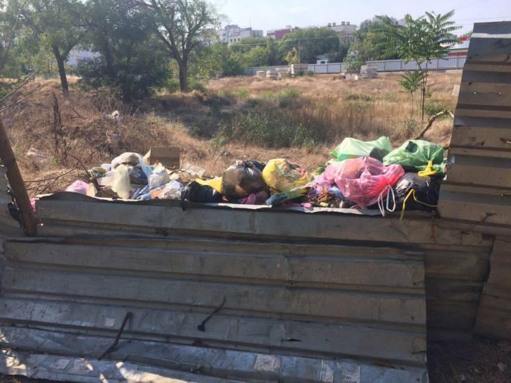 """Звичайне явище в """"рідній гавані"""": Гори сміття в окупованому Криму, які ніхто не вивозить (ФОТО)"""