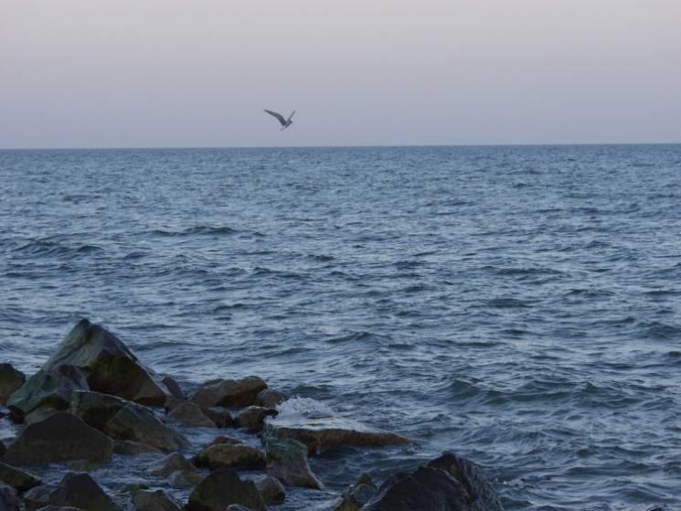 Безлюддя, лагідне море і тиша: Чи варто їхати до запорізьких курортів в оксамитовий сезон