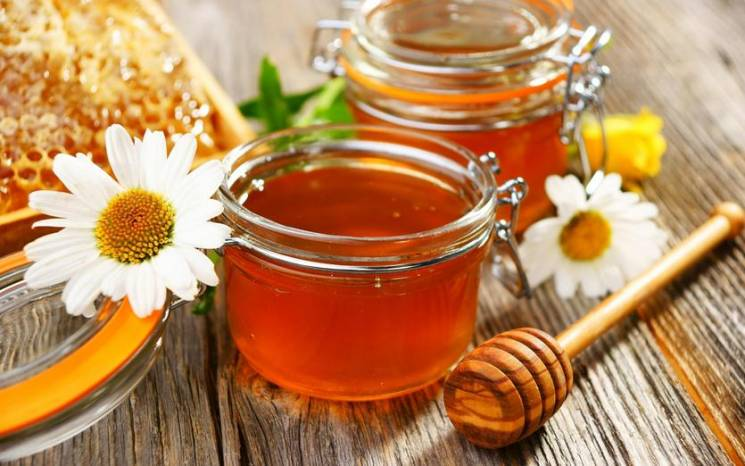Міжгірщина запрошує на фестиваль бджолярів