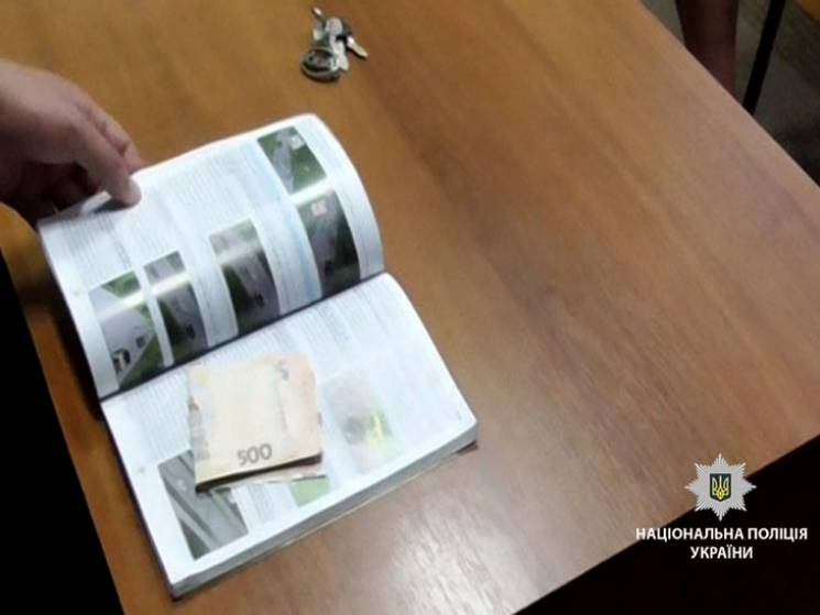"""На Полтавщині п'яний водій спробував """"дати на лапу"""" поліцейському"""
