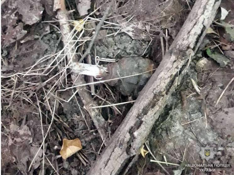 Житель Полтавщини у чагарниках під мостом знайшов ручну гранату (ФОТО)