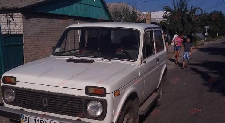 У Бердянську 10-річна дитина потрапила під колеса авто (ФОТО)