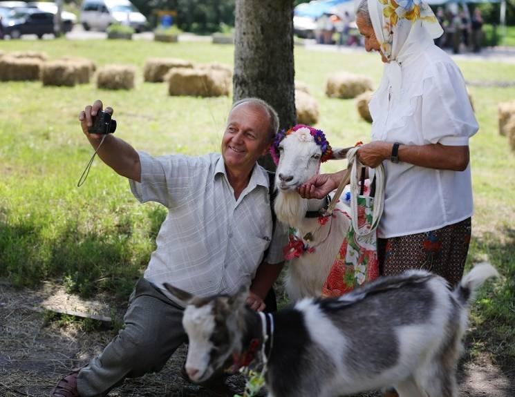 На Тернопольщине на дефиле среди коз поб…