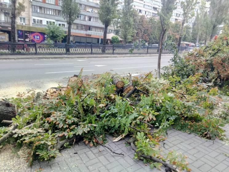 Кінець світу у Києві: Потужний буревій л…