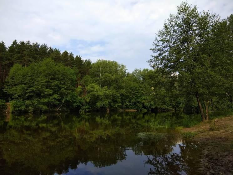 На Полтавщині у Котельві потонув 69-річн…