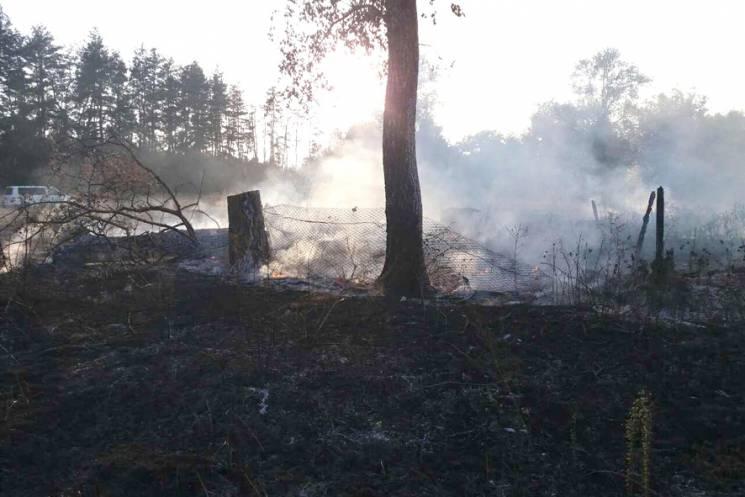 На Полтавщині вирують масштабні пожежі…