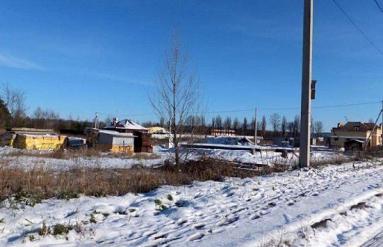 Суд забрал у экс-«регионала» Волкова 38 гектаров под Киевом