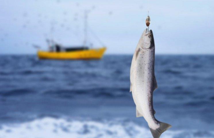 В оккупированном Крыму рыбный кризис: вылов упал на 60%