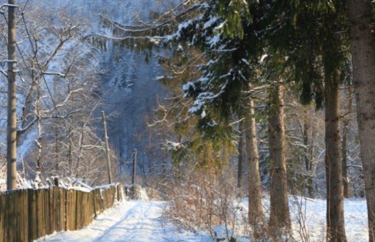 Закарпаття: прогноз погоди на 4 грудня - ворота зими