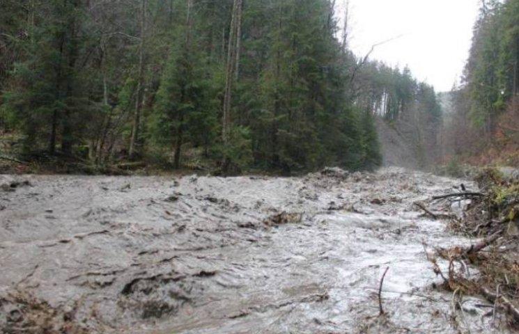 Паводки на Закарпатті ведуть до екологічної катастрофи, - експерти