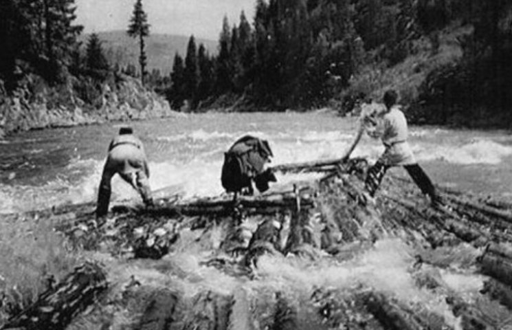 Як у минулому столітті дужі бокораші по Тисі ліс сплавляли