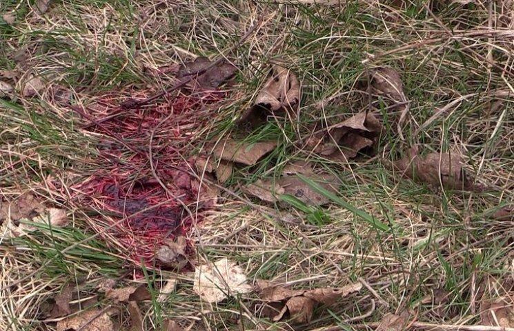 У Захарченка порахували кількість загиблих за тиждень бойовиків