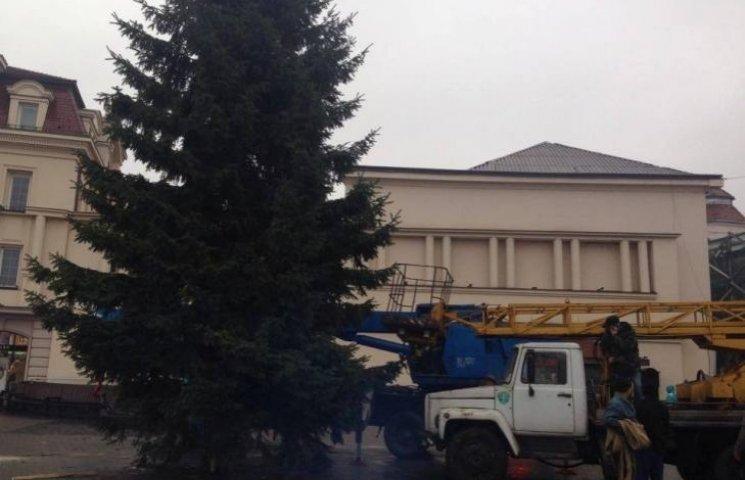 Урочисте запалення ужгородської ялинки відбудеться 18 грудня