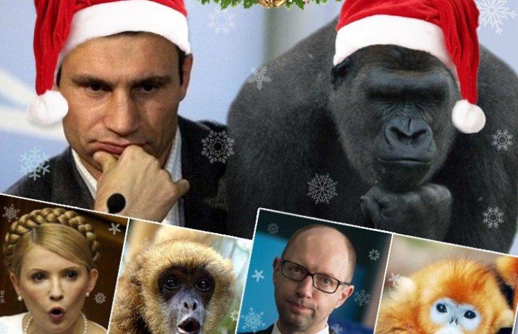 Нащадки кмітливих макак: Ким є Ляшко, Коломойський і Яценюк у світі мавп