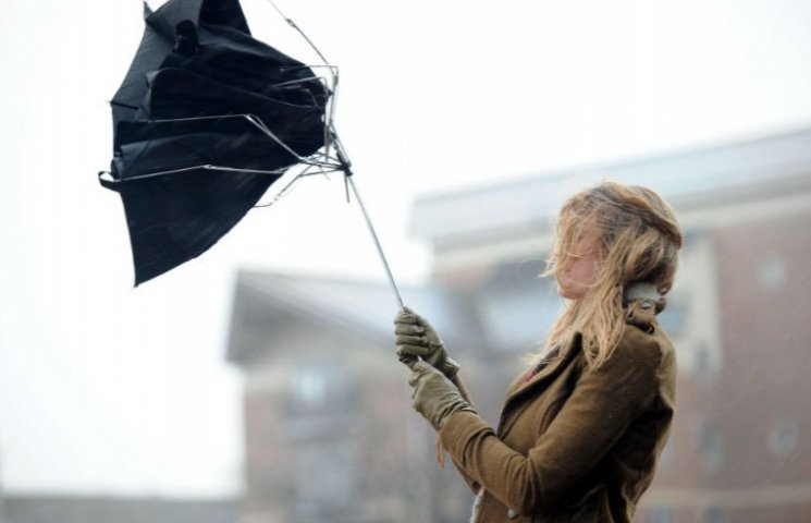У Києві та Київській області штормове попередження: Очікується шквальний вітер