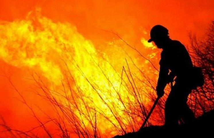 Цьогоріч вінничани пережили 2,5 тисячі пожеж