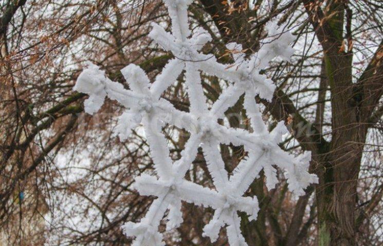 В Ужгороді закадрували сніжинку-мутанта