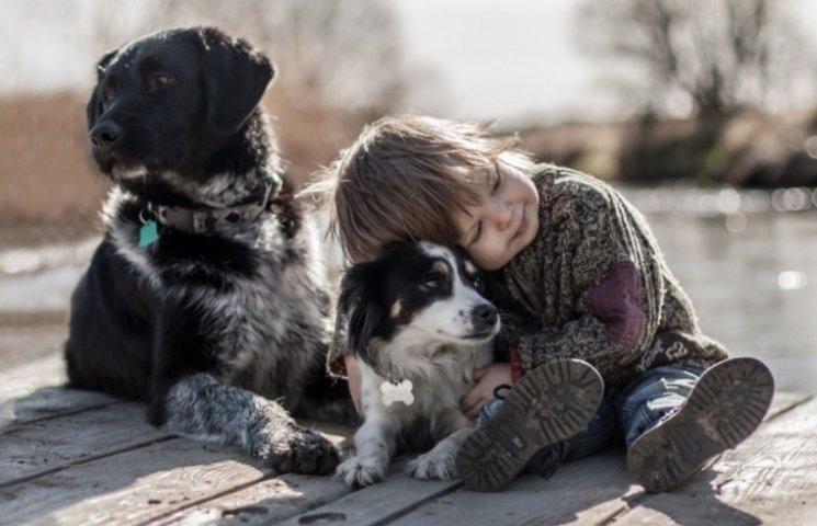 Когда слова излишни: как дети общаются с животными