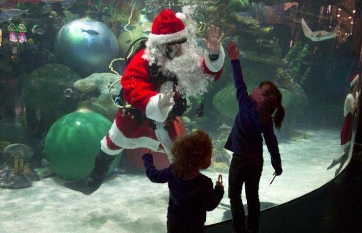 Як АкваСанти влаштовують Різдво на воді і під водою